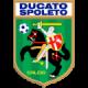 logo Ducato Calcio