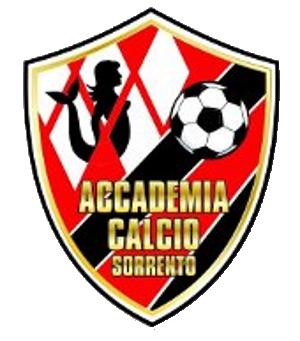 Calendario Giovanissimi Regionali.Accademia Calcio Sorrento U15 Calendario Squadra
