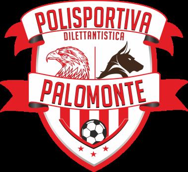 Calendario Juniores Regionali.Real Palomonte U19 Calendario Squadra Campania
